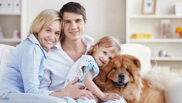 Wills & Trusts dog-young-family Direct Wills Accrington